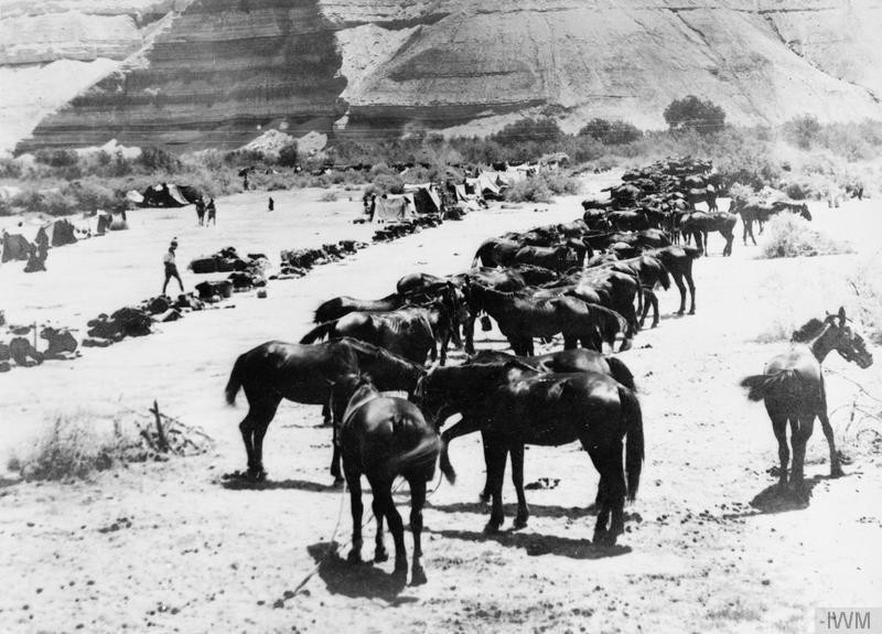 The Advance through Palestine and the Battle of Megiddo: The horse-lines of the Australian Light Horse under the cliff at Auja ford in Palestine. Imperial War Museum image HU90359