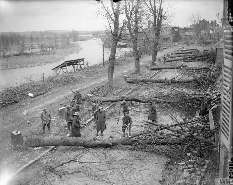 Trees felled by the German troops across the road at Peronne. March 1917. Imperial War Museum image Q5104