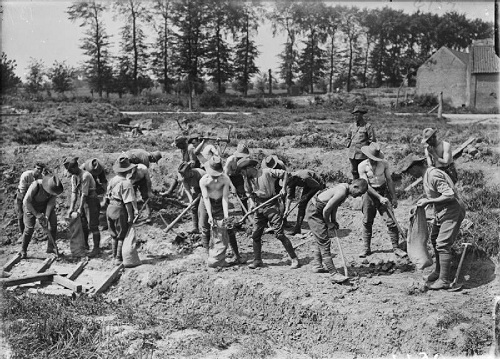 Australian pioneers at work behind the lines near Fleurbaix in May 1916. From the Ministry of Information First World War Official Collection at the Imperial War Museum, copyright image Q577,with my thanks.