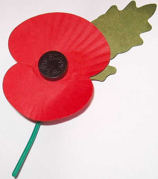 The paper and plastic poppy as sold by the Royal British Legion for fund-raising today.